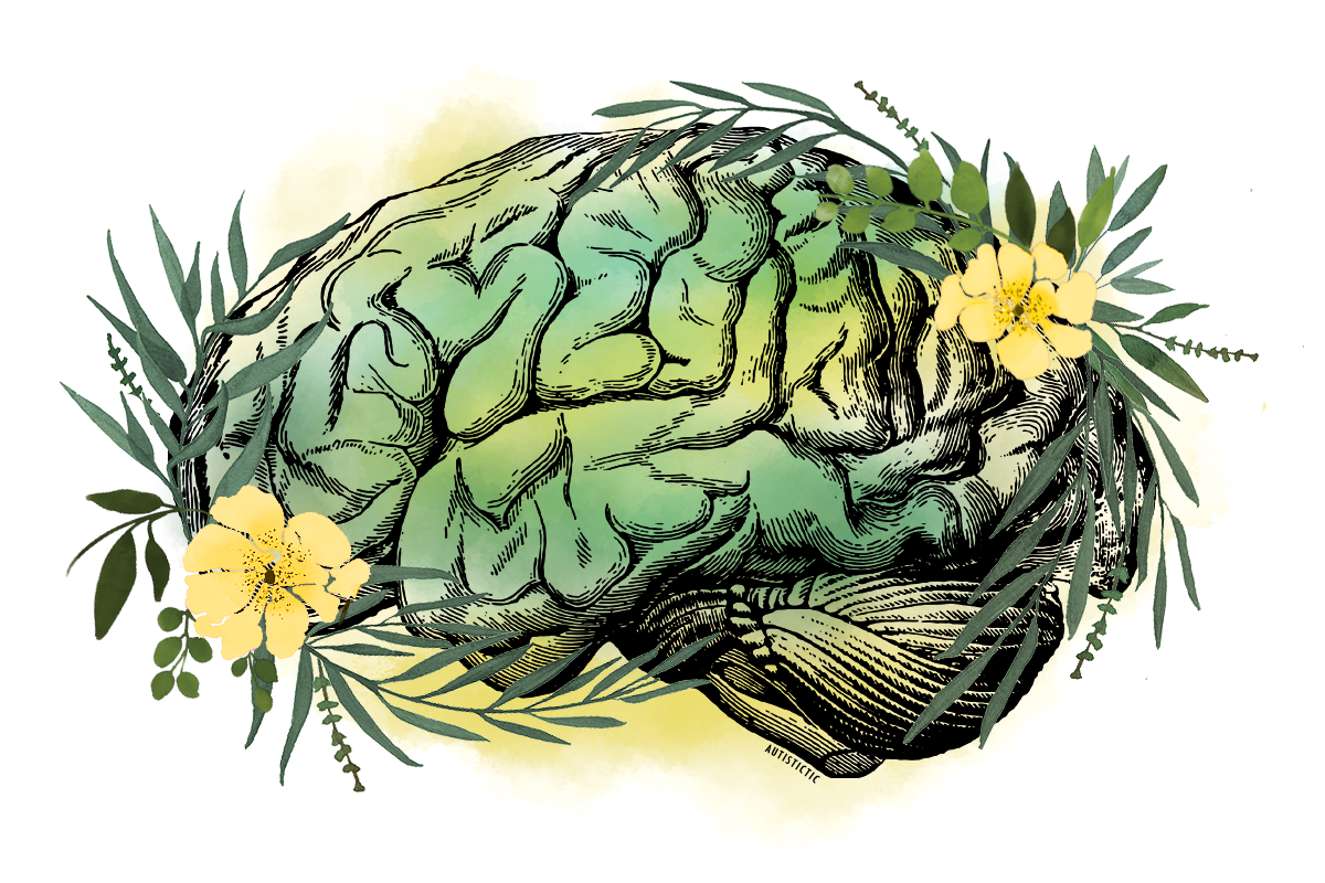 Textbook-like illustration of a brain as line-art. It rests on a green and yellow watercolor background. Green branches with leaves wind around it like a frame and two yellow flowers grow on the left and right side.