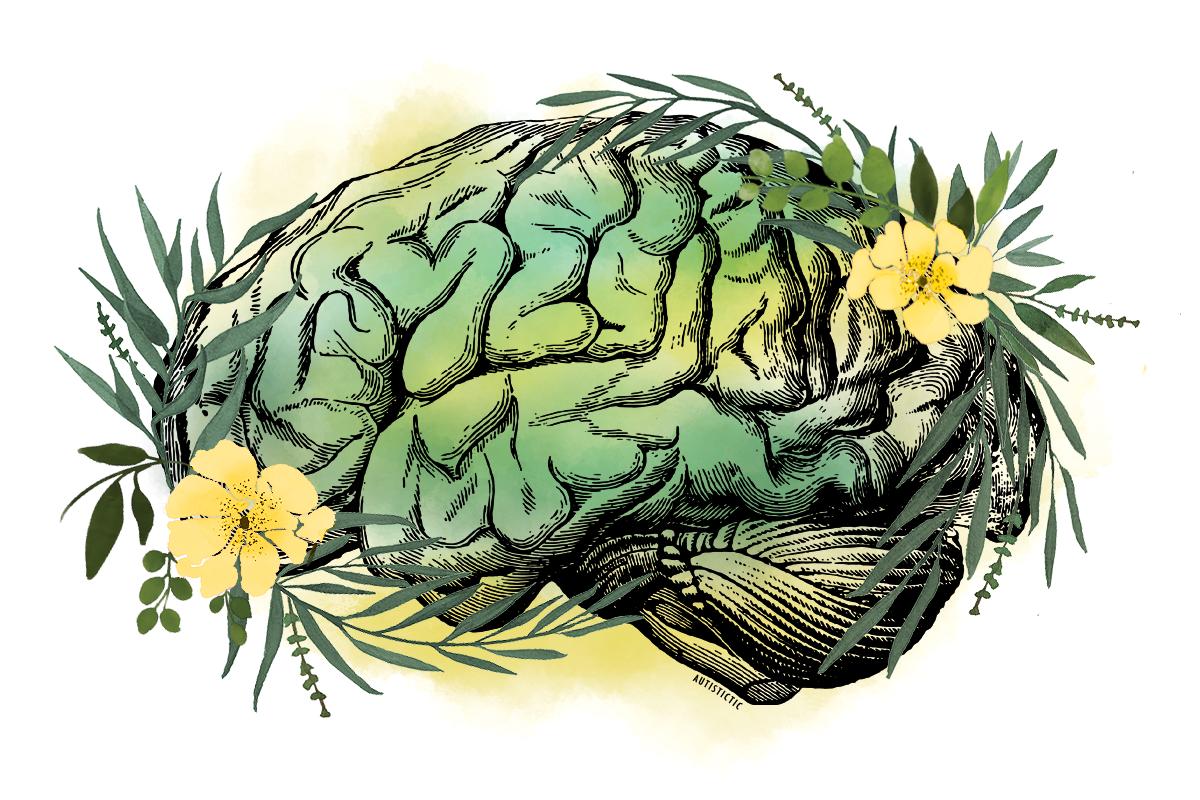 Illustration eines Gehirns in textbuchartiger Linienführung. Es ruht auf einem gelb-grünen Aquarellhintergrund. Rechts und links ranken Zweige mit grünen Blättern und umrahmen das Gehirn. Zwei gelbe Blüten wachsen jeweils auf einer Seite.